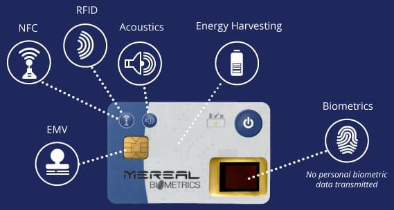 graphic-biometrics-cards-acoustics.jpg
